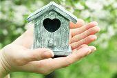 foto of nesting box  - Decorative nesting box in female hands on blooming garden background - JPG