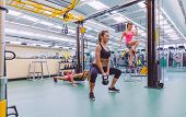 picture of hard-on  - Group of beautiful women training hard in a crossfit circuit on fitness center - JPG