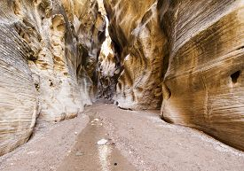 pic of willy  - Willis Creek slot canyon at Utah BLM - JPG