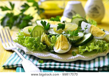 Fresh Vegetable Salad With Eggs.