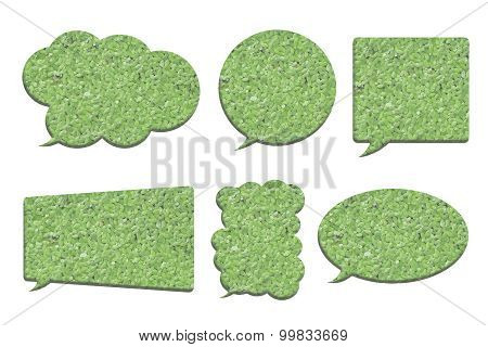 Duckweed Or Water Lettuce In Bubble Speech Shape Isolated On White