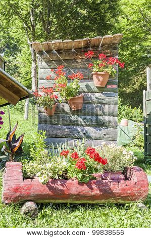 Outdoor Toilet With Flowers.