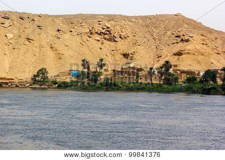 Little Village Nile