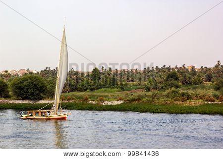 Nile River Boat