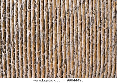 Close Up Bulrush Seat Decoration, Texture Or Background