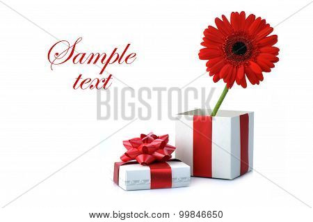Gift And Red Flower