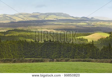 Azores Landscape With Meadows, Forests And Mountains In Terceira. Portugal
