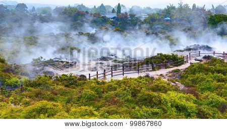 Te Puia thermal park. Rotorua town, New Zealand