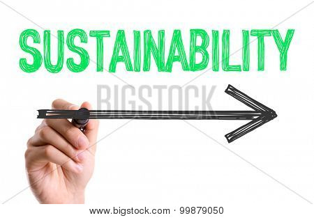 Hand with marker writing the word Sustainability