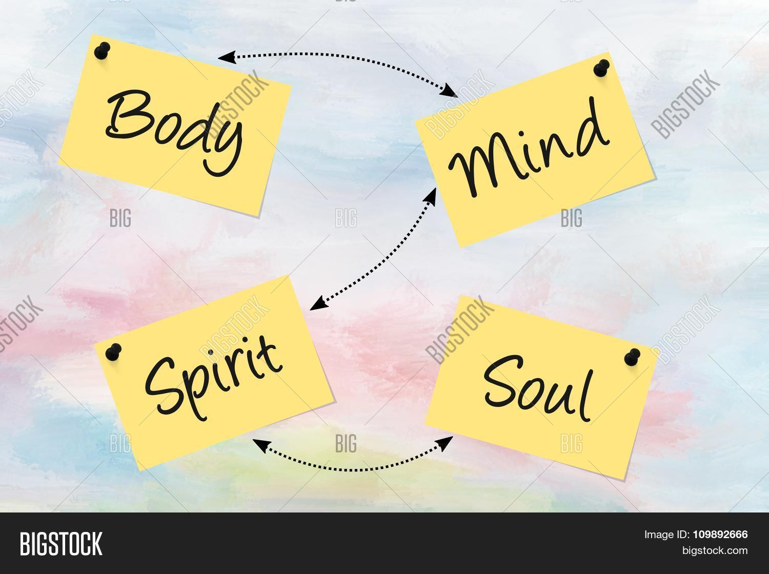 Essay on mind body and soul