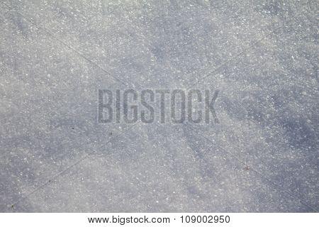Hoarfrost On The Plants In Winter Field