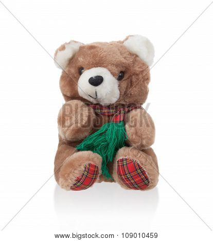 Teddy Bear With Scarf