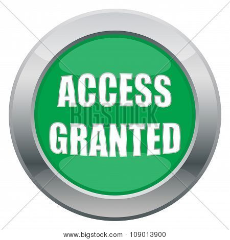 Access Granted Icon
