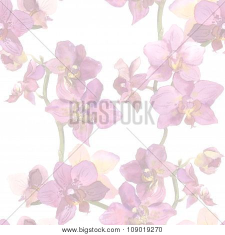 Light pastel floral backdrop with tropical flowers orchids