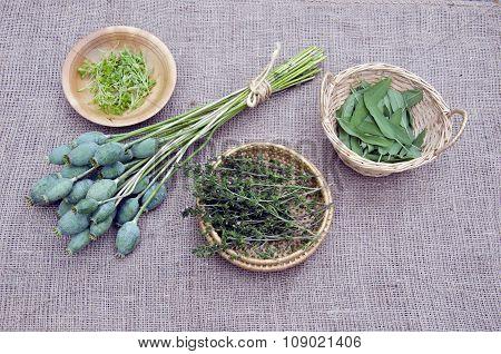 Herbs In Wicker Baskets And Poppy Heads