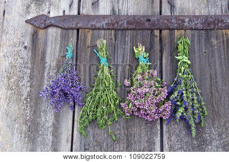 Bundles Of Medical Herbs Hanging On The Door