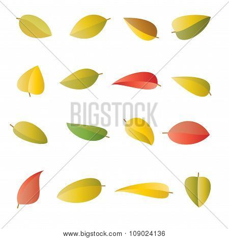 Set Of Multicolored Bright Autumn Leaves, In Vector