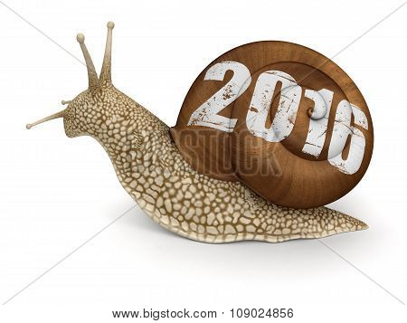 Snail 2016 (clipping path included)