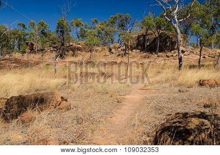 Outback, Queensland, Australia