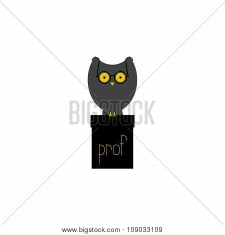 Owl Prof