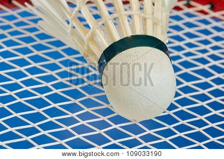Badminton Racket and shuttlecocks with feathers