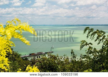 landscape, azure water and blue sky, in the foreground plants