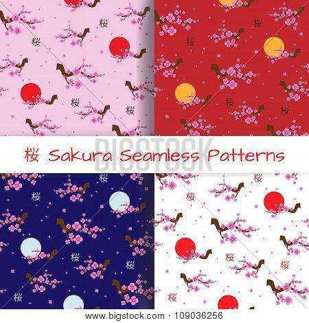 Set of Spring Seamless Patterns Blooming Sakura