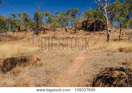Australia, Hiking in the Outback, Undara Volcanic National Park