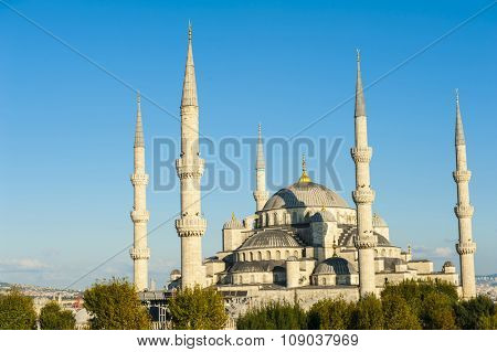 Blue Mosque lit by a evening sun, Istanbul, Turkey