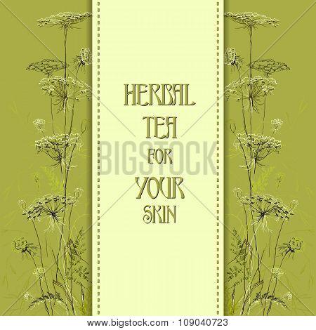 Hand drawn green herbs. Vertical design background.