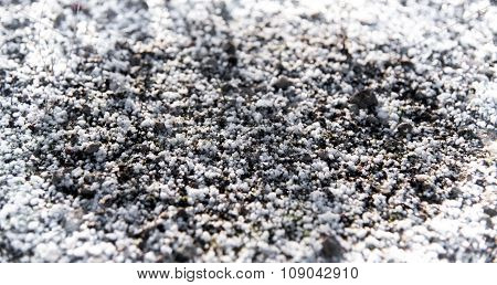 Natural Background Of Snow And Frost