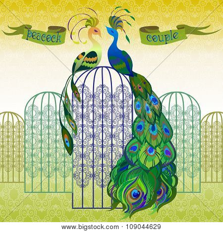 Couple peacocks. Ribbon with text. Yellow and green design.