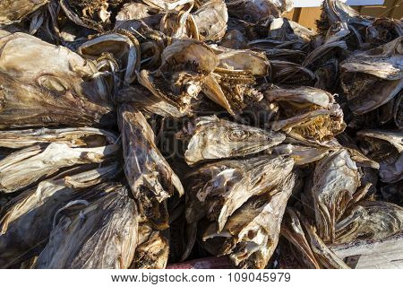 Dry Heads Of Stockfish Cod