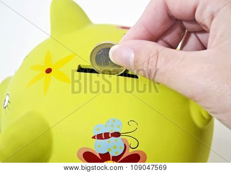 pig money box saving money concept