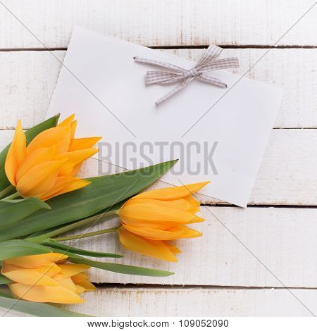 Fresh  Spring Yellow Tulips Flowers And Tag On White  Painted Wooden Planks.