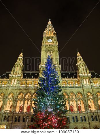Christmas Tree At Rathaus In Vienna With The French Flag Colors