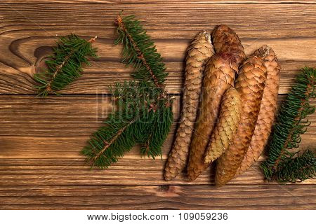 christmas background with fir branches and cones