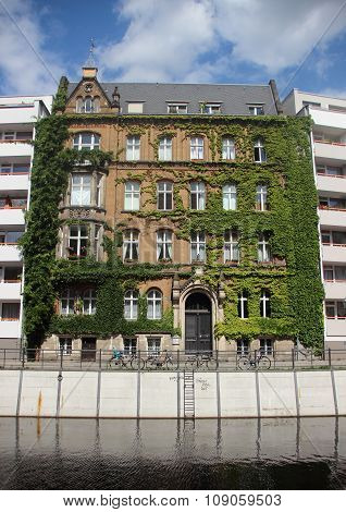 Old Building With Ivy Between New Apartment Blocks