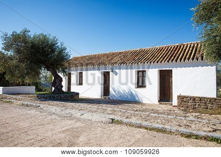 Traditional Spanish House