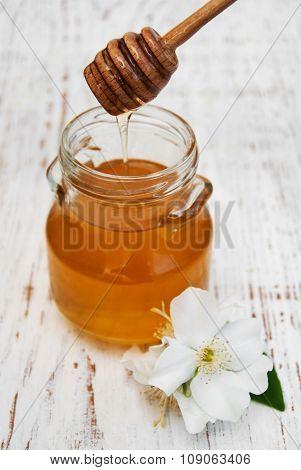 Honey And Jasmine  Flowers