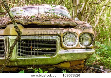 Pontiac Wrecked In Woods