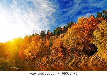 Autumn Forest By The River At Sunset