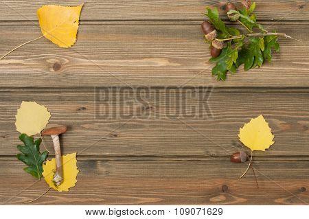 Oak Acorns, Autumn Leaves, Wild Mushroom. Wooden Table. Outdoors