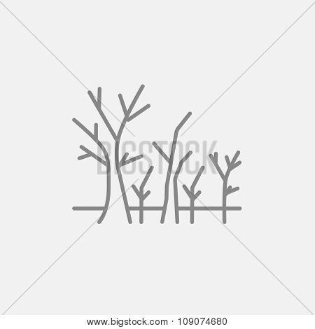 Tree with bare branches line icon for web, mobile and infographics. Vector dark grey icon isolated on light grey background.