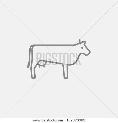 Cow line icon for web, mobile and infographics. Vector dark grey icon isolated on light grey background.