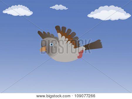 Bird in the blue sky