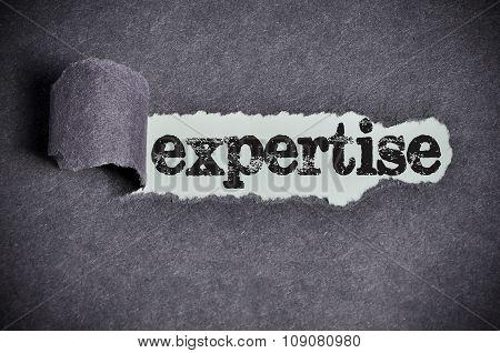 Expertise Word Under Torn Black Sugar Paper