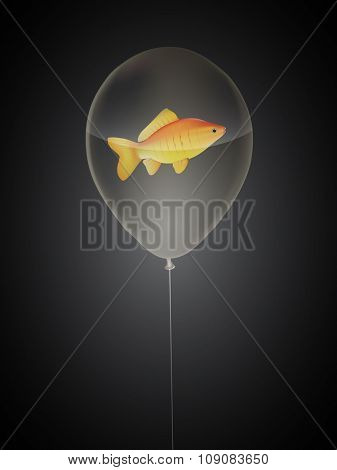 vector goldfish in a balloon