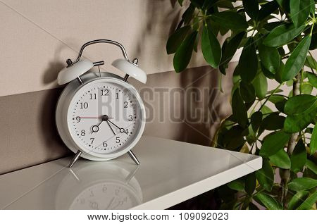 Alarm Clock With A Potted Plant