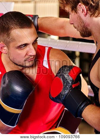 Portrait of two sport  men boxer wearing  and  gloves boxing .